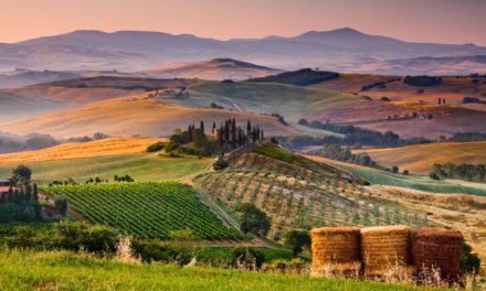 Bajo el sol de Toscana: Una película que brama por el sol