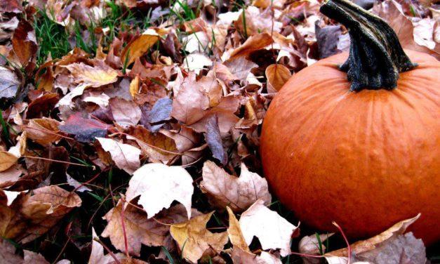 "Halloween (""All Hallow's Eve"")"