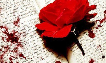 23 de abril: La rosa y el libro