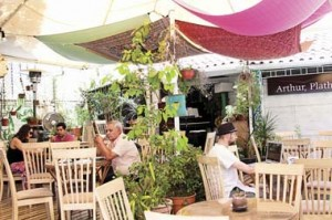 Cafe Botanico Fotografia: Jose Miguel Mendez