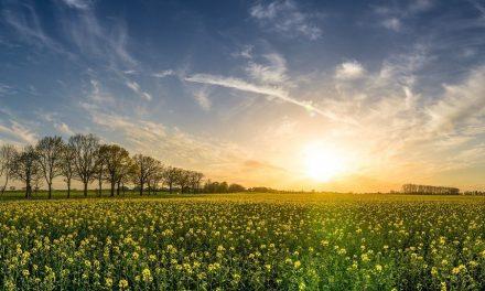 Semana de mucha tierra y lindos aspectos en el cielo